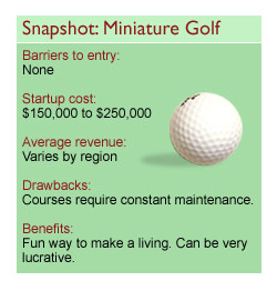 Starting a Business in the Miniature Golf Industry