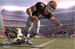 Madden 2005 has faced stiff competiton this year.