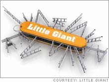 The many uses of the Little Giant